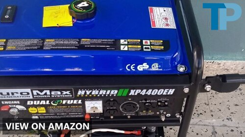 DuroMax XP4400EH vs WEN DF475: Dual Fuel Portable Generators