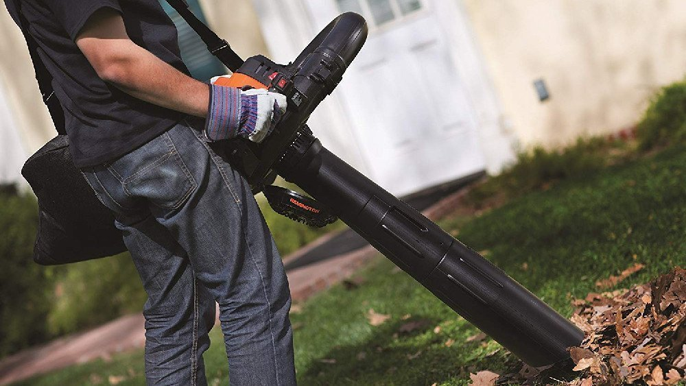 Should you buy a leaf blower or a rake?
