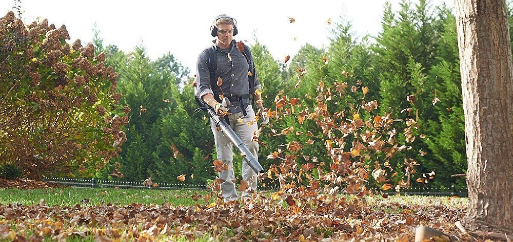 Why Buy a Leaf Blower?